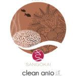 clean-anio