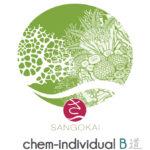 sango-chem-individual-b